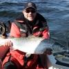 Salmon in Sweden on TNT